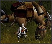 NPC Wandering Merchant Mu Online