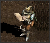 NPC Guardsman Mu Online
