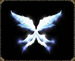 Wing of Enternal Mu Online