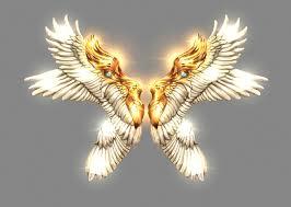 Wing of Magic Mu Online